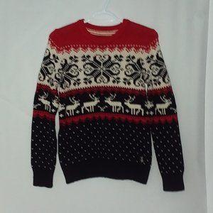 reindeer/ski beautiful winter  sweater
